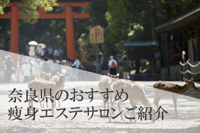 奈良県の人気のある痩身エステサロン