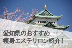 愛知県(名古屋,栄,豊田)でおすすめの痩身エステサロンランキング