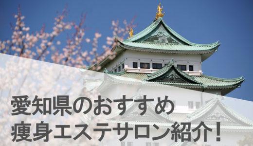 愛知県(名古屋,栄,安城,豊田)の体験できる安い人気のおすすめ痩身エステランキング