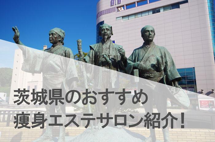 茨城県で人気が高いおすすめの痩身エステサロン